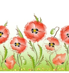 red poppy flowers seamless texture vector image