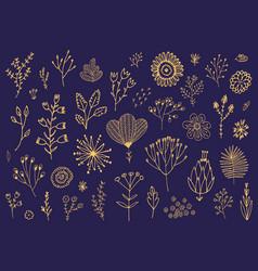 set doodle hand drawn flowers florals vector image