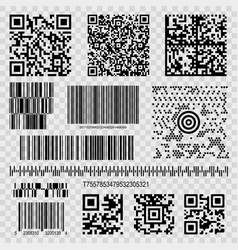 barcodes and qr codes vector image