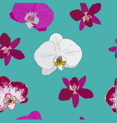 Tropical seamless pattern with orchids flowers vector