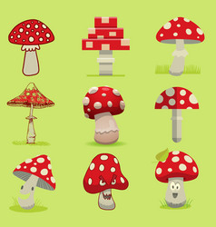 Amanita poisonous mushroom isolated vector