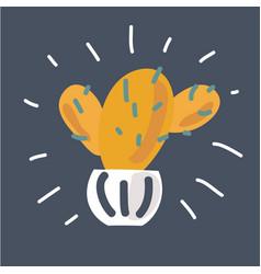 cactus succulents in ceramic pot vector image