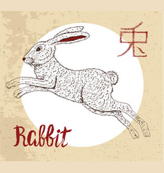 Chinese zodiac symbol of etching rabbit with hiero vector