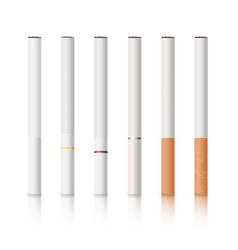 Cigarettes set with white and yellow filters vector