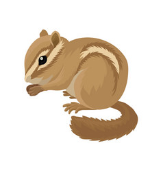flat icon of small brown chipmunk small vector image
