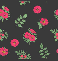 floral seamless pattern with elegant dog rose vector image