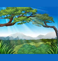 Nature scene with trees on mountains vector