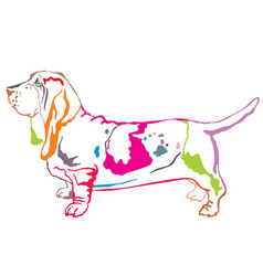 colorful decorative standing portrait of basset vector image