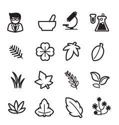 herb icons set vector image