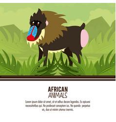 African animals cartoons vector