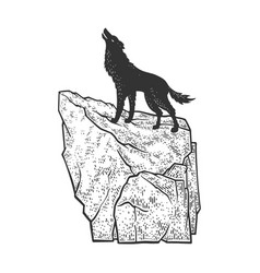 coyote howling on rock sketch vector image