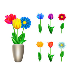 garden flowers set vector image