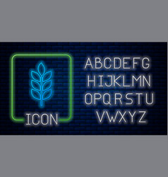Glowing neon cereals set with rice wheat corn vector
