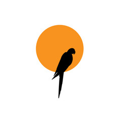 parrot logo idea design macaw bird and orange sun vector image