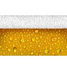 Beer with foam vector image