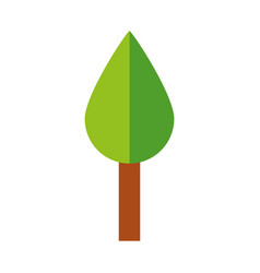 cute tree cartoon vector image