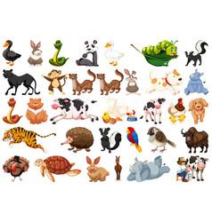 Large set animals vector