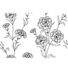 Seamless pattern carnation flower and leaf hand vector