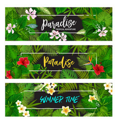 tropical exotic palm leaf banners vector image