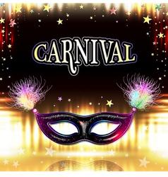 Venetian carnival mask vector image