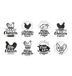 Chicken label set food poultry farm meat egg vector
