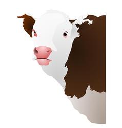 of a cows head vector image