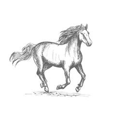 Horse racing sport equine symbol vector image vector image