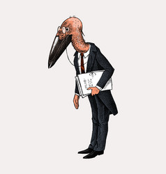 Marabou character bird man or lawyer in a classic vector