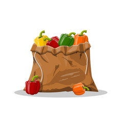 pepper bell vegetable in canvas bag vector image