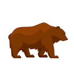 Stylized of bear woodland forest vector