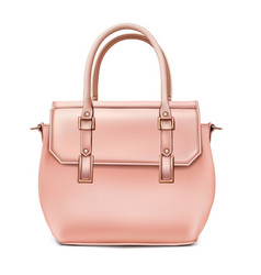 Unn stylish womens beige handbag vector