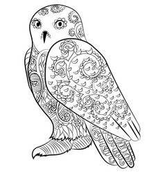 snowy owl in the zentangle style vector image vector image