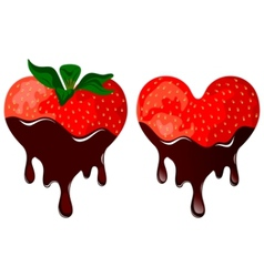 strawberry in chocolate vector image vector image