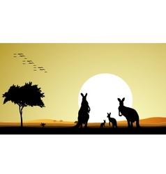 kangaroo family silhouette vector image vector image