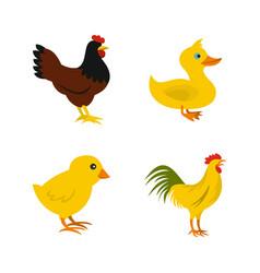 Domestic bird icon set flat style vector