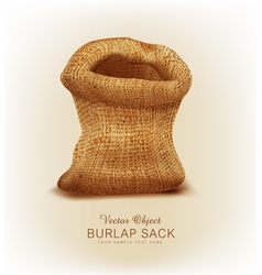 object- a burlap sack vector image