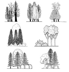 a set tree silhouettes for architectural or l vector image