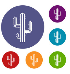 cactus icons set vector image