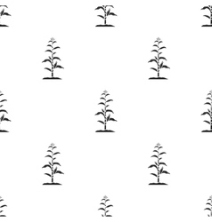 Corn icon in black style isolated on white vector