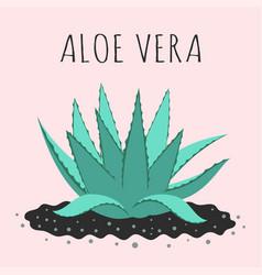 Cute with cartoon aloe vera isolated vector