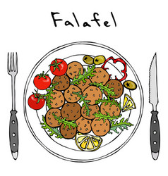 Falafel arugula herb leaves lemon tomato on vector