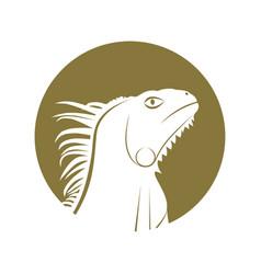 iguana white vector image