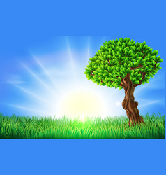 Sunny field tree background vector