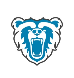 Bear Logo for sport club or team Animal mascot vector image vector image