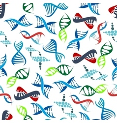 Abstract seamless human DNA helices pattern vector image vector image