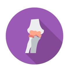Knee-joint single flat icon vector image