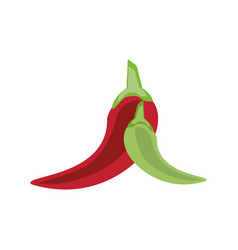 chili peppers icon image vector image