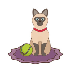 cute cat with tennis ball vector image