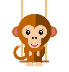 female monkey vector image