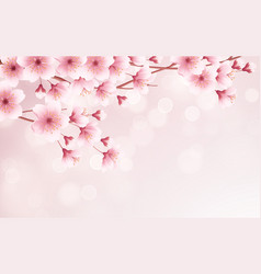 spring time beautiful background with spring vector image